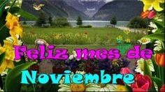 Feliz mes de Noviembre