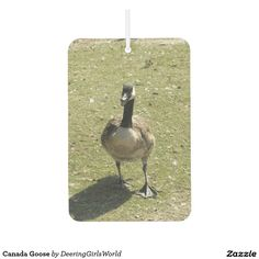 Canada Goose Car Air Freshener