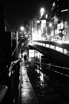 Night Crawler by Takehiko Nakafuji  Zen Foto Gallery on BJP