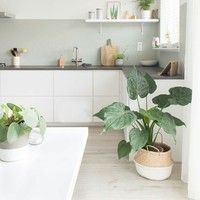 75 Small Apartment Kitchen Decorating Ideas - home/interior: accessoiries and things. - home decor Modern Kitchen Interiors, Interior Design Kitchen, House Interior, Kitchen Decor Apartment, Scandinavian Kitchen, Beautiful Kitchens, Home Kitchens, Minimalist Kitchen, Small Apartment Kitchen