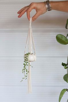 Single Mini Macrame Plant Hanger + Ceramic Pot Set // Natural Cotton Hey, I found this really awesom Macrame Art, Macrame Projects, Macrame Knots, Macrame Plant Holder, Plant Holders, Hanger Crafts, String Of Pearls, Macrame Patterns, Hanging Plants
