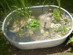Miniteich endete in - Diy Garden Ideas Container Pond, Container Water Gardens, Container Gardening, Balcony Plants, Patio Plants, Amazing Gardens, Beautiful Gardens, Mini Pond, Potager Garden