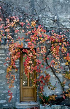 Rock cottage in autumn