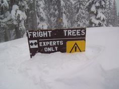 Fright Trees