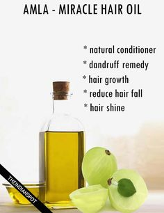 The Miracle Oil For Hair - Amla Oil benefits and uses