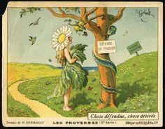 2. Chose défendue, chose désirée (Frutto proibito, più saporito), 1908-10