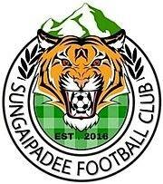 Fifa, Creative Art, Branding Design, Soccer, Badges, Football, Logos, The World, Football Equipment