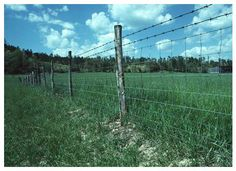 Agriculture land with fencing and with water facility 9 acres NINE(9) ACRES agricultural land with fencing and with good water facility, *Just 15 minutes travel from GEDILAM junction in VILLUPURAM to THRICHY bypass. *just 10 minutes travel from ANNAI THERESA ENGINEERING COLLEGE ,GEDILAM. *The land was in Eswarakandanallur to East Mardur(B.T road), Thirunavallur(VIA),Villupuram district. venkatesh 09787280108