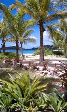 Antigua - Galley Bay Resort