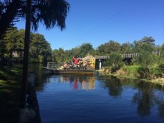 Airboat in Florida Airboat Rides, Florida