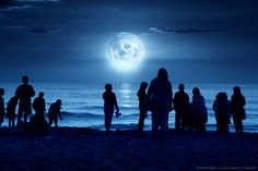 Image detail for -Silhouette Image of People Standing on Moonlit Beach