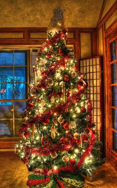 Christmas Tree by Dave Gillenwater on 500px