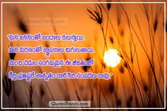 Telugu Inspirational Quotes, Motivational Images, Good Morning Images, Good Morning Quotes, Miss You Images, Festival Quotes, Love Failure Quotes, Diwali Wishes, Missing You Quotes