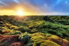 Eldhraun, Iceland Photo by Dennis Van De Water  (3833×2553)