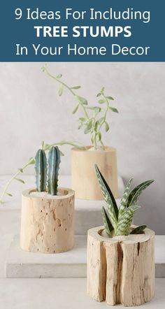 9 Ideas For Including Tree Stumps In Your Modern Home Decor