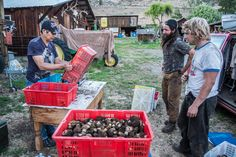 """Photos: Inside the transient world of mushroom pickers — High Country News  In spring and fall, the mountain forests that stretch from Alaska to California are filled with mushroom hunters, known as """"pickers."""" Some are hobbyists, but others make a living from tracking down the pricey fungi. The commercial pickers follow traces to particular kinds of mushrooms, often tied to the shifts the landscape is undergoing."""