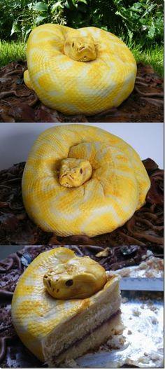 Snake cake...Great job!