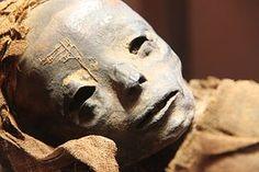 Mummy, Museum, Egyptian, Egypt, Ancient