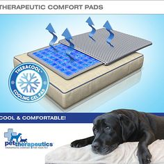 TheraCool Cooling Pads are comprised of maximum depth, non-toxic gel cells that are designed to help reduce inflammation, provide support, ease pain and promote circulation. So after a full day of running, playing and fetching, he's feelin' it too. Go on, throw him a bone, let him chill out and watch the game comfortably.