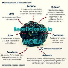 La mora se puede utilizar en muchas preparaciones culinarias. Es una fruta muy apetecida en todo el mundo por las propiedades medicinales que contiene.