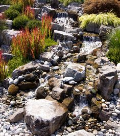 Solve Water Runoff Issues with a Dry Creek Bed | Lifescape
