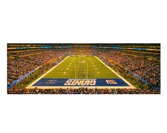 7287bfb6214 New York Giants Super Bowl XLVI Color Photograph Football Sports  Photography Lucas Oil Stadium Indianapolis Panoramic Art Print