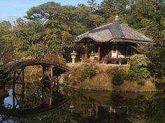 """Stanza da te'. #HANAMI Sentimento del Giappone, presentazione della lecture sui Castelli e giardini del #Giappone a cura della Dott.ssa Francesca Meddi - Landscape designer """"Lefty Gardens"""" www.midec.org"""