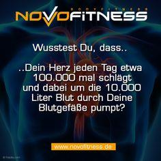 Wusstest DU, dass Deine herz jeden Tag etwas 100.000 mal schlägt und dabei um die 10.000 Liter Blut durch Deine Blutgefäße pumpt?