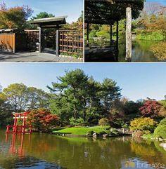 Um pouquinho do Jardim Japonês no Jardim Botânico do Brooklyn