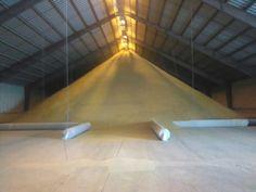 Grain Storage, Tile Floor, Basketball Court, Flooring, Tile Flooring, Wood Flooring, Floor