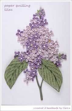 Lilacs made by Claire