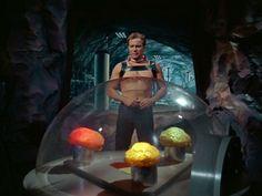 Ex Astris Scientia - Re-Used Props on Star Trek Star Wars, Star Trek Tos, Aliens, Star Trek 1966, Star Trek Beyond, Alien Races, Star Trek Movies, Star Trek Original, Starship Enterprise