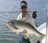 Photograph of Maine Saltwater Fly Fishing, Striped Bass Fishing