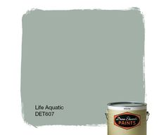 Dunn-Edwards Paints paint color: Life Aquatic DET607 | Click for a free color sample #DunnEdwards