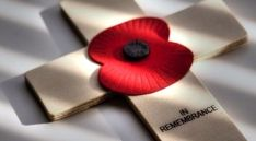 An Allerdale Borough Councillor is encouraging local people to show their support for the upcoming Remembrance Day. Councillor Carni-McCarron Holmes is the Council's Armed Forces Champion Red From Friday, Remembrance Day Poppy, Royal British Legion, Armistice Day, Killed In Action, Poppies, Cumbria News, November, British Soldier