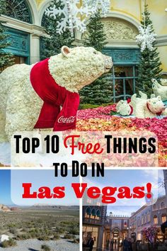 Top 10 Free Things to Do in Las Vegas Las Vegas is full of glitz glamor high rollers and sweaty tourists. The whole city is a giant gambling empire but what if youre not a big gambler? Ketchikan Alaska, Downtown Los Angeles, Ways To Travel, Travel Tips, Travel Destinations, Travel Ideas, Vegas Activities, Family Activities, Reisen In Die Usa