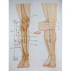 Acupuncture Points, Acupressure Points, Health And Nutrition, Health Fitness, Sigil Magic, Chinese Medicine, Reflexology, Massage Therapy, Alternative Medicine