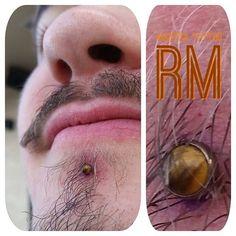 Fresh labret piercing with a tigers eye end from Thanks for looking! Labret Piercing, Lip Piercings, Mantra Tattoo, Denver Colorado, Body Jewelry, Tigers, Thankful, Lips, Fresh