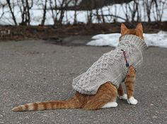 Ravelry: Georg pattern by Jutta Juvenius. My cats are getting sweaters for… Crochet Home, Knit Or Crochet, Knitting Projects, Knitting Patterns, Free Knitting, Animal Sweater, Knitted Cat, Cat Pattern, Free Pattern