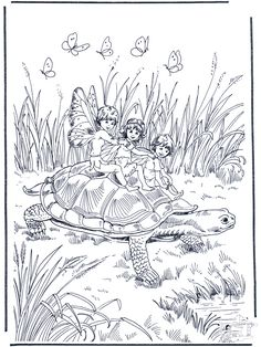 elf on turtle - Google Search