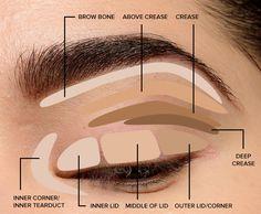 Makeup Tips for Beginners: Eye Shadow Placement & Eye Makeup Diagram - Make . - Makeup Tips for Beginners: Eye Shadow Placement & Eye Makeup Diagram – Make Up Tips - Beginner Eyeshadow, Eyeshadow Tips, Blending Eyeshadow, How To Apply Eyeshadow, How To Apply Makeup, Applying Makeup, Applying Eyeshadow, Makeup Eyeshadow, Eyeshadow Palette