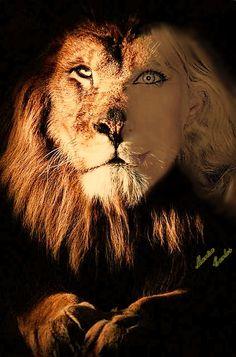 O leão em mim...