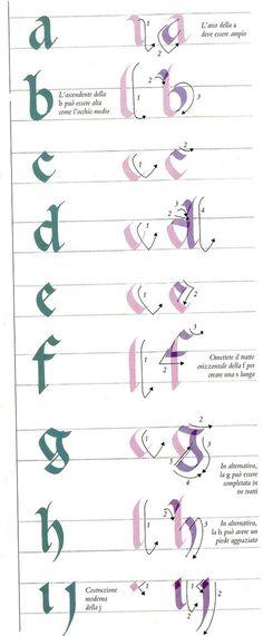 calligrafie - ASDPS ARMIS ET LEO