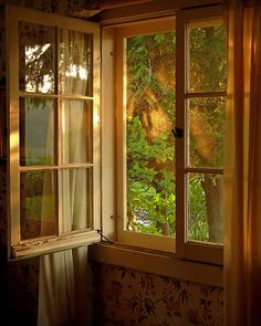 SUSAN KIMBALL A Summer Song So lovely and peaceful! The dappled light and reflection on the window panes are just perfection to the mood.