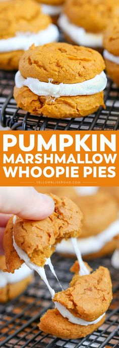 27 min · Pour 18 sandwiches · These Pumpkin Cookie & Marshmallow Whoopie Pies are a delicious and easy fall dessert. Made with a simple cake mix dough and toasted marshmallows, they will be at the top of your fall baking list! Fall Dessert Recipes, Fall Desserts, Just Desserts, Fall Recipes, Delicious Desserts, Yummy Food, Halloween Desserts, Sweets Recipes, Halloween Treats