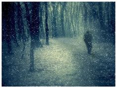 She tells her love while half asleep,          In the dark hours,                  With half-words whispered low:   As Earth stirs in her winter sleep          And puts out grass and flowers                   Despite the snow,                   Despite the falling snow.     by Robert Graves