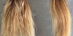 This miracle concoction will show you how to repair YEARS worth of damaged hair in just 2 weeks!