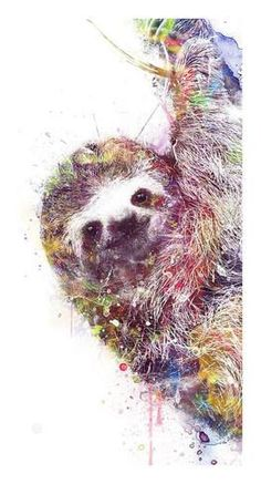 Image result for sloth art