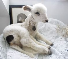 Vintage Taxidermy Lamb White Sheep by LePetitPierrot on Etsy