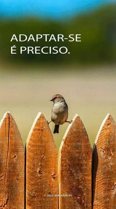 Frases e Posts More Than Words, Some Words, Inspire Me, Make Me Smile, Just In Case, Decir No, Favorite Quotes, Funny Pictures, Inspirational Quotes
